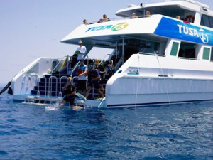 Web.Tusa-Dive-entry-2