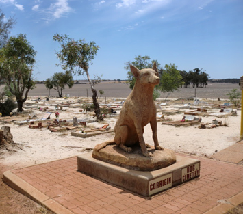 Wave Rock - Dog Cemetary